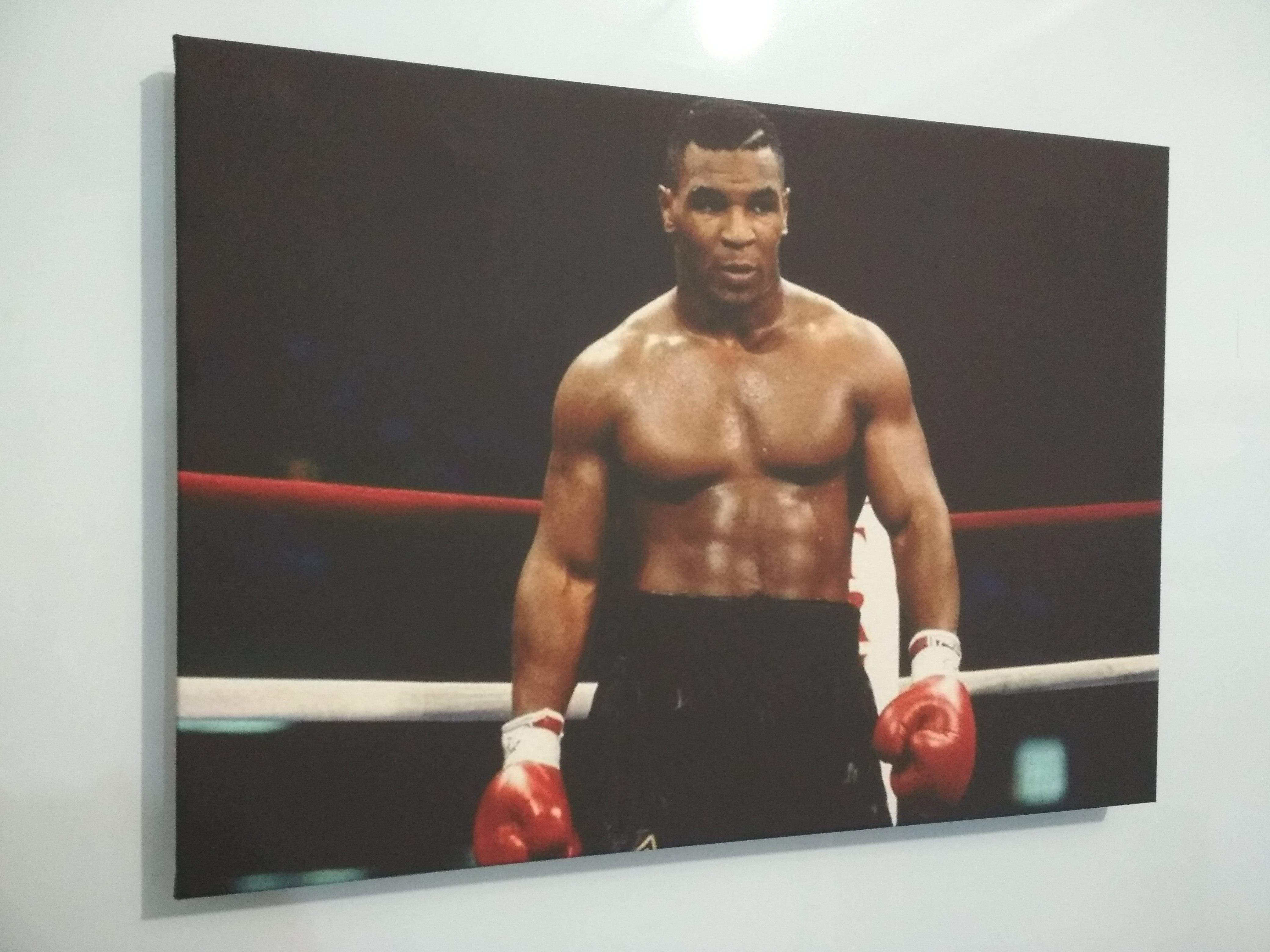 Картина боксер